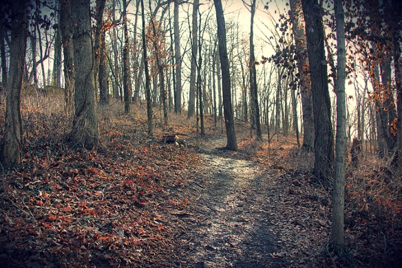 path with filter