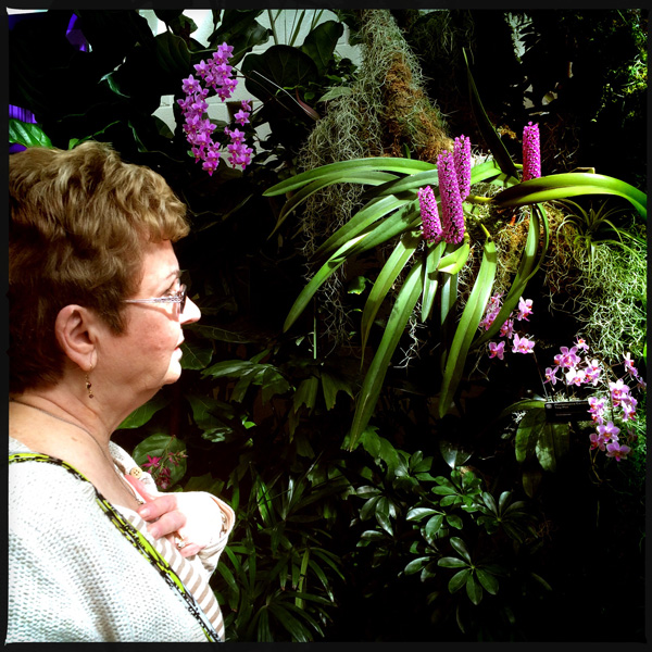 mom and orchids