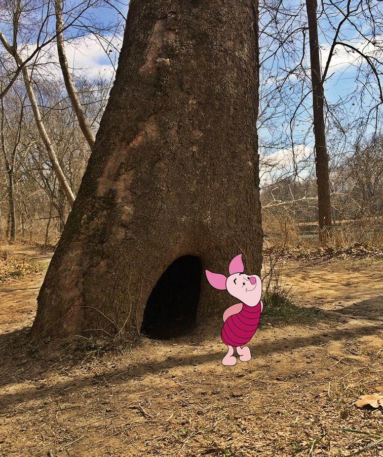 piglets house w piglet