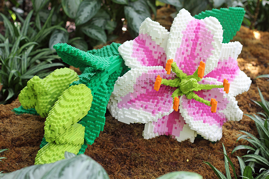 lego lily