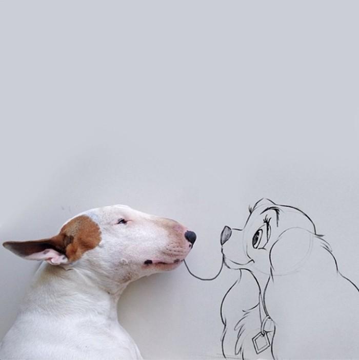 Lady & The Terrier © @rafaelmantesso