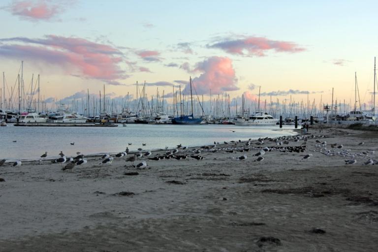 sailboats at sunset2